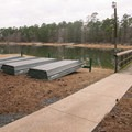 The state park offers seasonal boat rentals!- South Toledo Bend State Park Campground