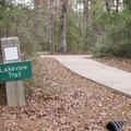 Lakeview Trail starts near the boat ramp and ends near the visitor center- South Toledo Bend State Park Campground
