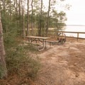 One of the primitive tent sites with a great view of the reservoir. - South Toledo Bend State Park Campground