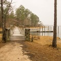 Boardwalk and a floating dock that is situated between cabins 8 and 9 that makes for easy access to the water. - South Toledo Bend State Park Campground