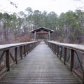 Lakeview trail crosses over the lake. The visitor center can be found on the other side. - South Toledo Bend State Park