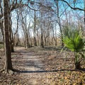 The trail follows a mostly-flat course through medium-dense vegetation and swamp area.- Bonnet Carre Spillway