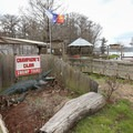 Champagne's Cajun Swamp Tours, just south of the boat launch, offers canoes and kayaks for rent.- Lake Martin Paddling