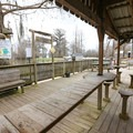 Champagne's tours are operated out of their retail space, which has an outdoor sitting deck allowing visitors to hang out at the edge of the swamp.- Champagne's Cajun Swamp Tours