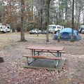 Camp Area 2's sites include tables and fire pits along with options for RV hookups.- Sam Houston Jones State Park Campground