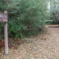 The trail does not make a complete loop, but instead ends just north of the Camp Area 2 bathroom building.- Riverwalk Trail