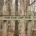 Trail sign for Paw Paw Loop.- Louisiana State Arboretum Preservation Area
