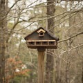 Cute and rustic birdhouse. The birding here is good!- Chemin-A-Haut State Park