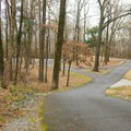 Road leading to the boat ramp.- Chemin-A-Haut State Park