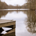 Fisher tries his luck on Bayou Bartholomew.- Chemin-A-Haut State Park