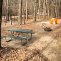 A typical campsite in Lake D'Arbonne Campground. - Lake D'Arbonne State Park Campground