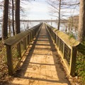 A boardwalk that stretches out over Lake D'Arbonne- Lake D'Arbonne State Park Campground