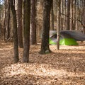 One of the primitive campsites at the campground. - Lake D'Arbonne State Park Campground