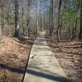 One of the scenic pathways found below the cabins. - Lake D'Arbonne State Park Campground