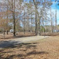 Fontainebleau Campground offers several types of RV-accessible camp sites, including options for electric and water hookups and four sites with sewage hookups.- Fontainebleau State Park Campground