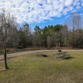 A pull-through site with only a fire ring and table.- Fontainebleau State Park Campground