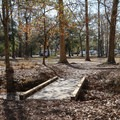 A footbridge crosses a wet area between campgrounds. The bridge and adjacent locations allow for easy travel between differing amenities at each campground, and it gives campers the chance to explore on foot.- Fontainebleau State Park Campground