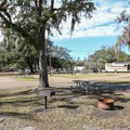 Fontainebleau State Park Campground.- Fontainebleau State Park Campground
