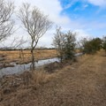 Wetlands and agricultural land surround the hiking area.- White Lake Wetlands Conservation Area Birding + Nature Trail