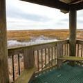 Views from the Birding and Nature Trail observation deck.- White Lake Wetlands Conservation Area Birding + Nature Trail