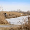 Bank Fishing Road offers a public fishing area near the Pintail Nature Drive and Boardwalk Trail.- Cameron Prairie National Wildlife Refuge