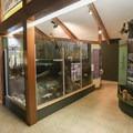 Displays inside the visitor center.- Cameron Prairie National Wildlife Refuge