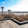 Mounted telescopes along the Pintail Boardwalk Trail.- Cameron Prairie National Wildlife Refuge
