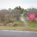 The trail to the beach leaves directly from the campground.- Grand Isle State Park Campground