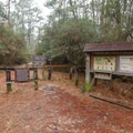 Trailhead for the Stagecoach and Longleaf Pine trails.- Sam Houston Jones State Park