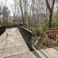 The Barataria Preserve has a visitor center along with miles of boardwalk trail for visitors to see a swamp wildlife area.- Jean Lafitte National Historical Park + Preserve