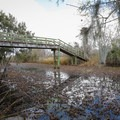 A tall bridge crosses the Lower Kenta Canal at the far end of the Marsh Overlook Trail.- Jean Lafitte Barataria Preserve Wetlands Trails