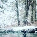 A coat of winter snow on the Big Wood River.- Winter Fly Fishing with Silver Creek Outfitters