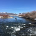 Silver Creek.- Winter Fly Fishing with Silver Creek Outfitters