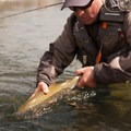 Sean Sullivan's catch on the Big Lost River.- Winter Fly Fishing with Silver Creek Outfitters