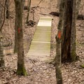 The trail is extremely well-blazed and easy to follow. - Chicot State Park Hiking Trail