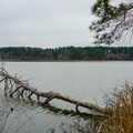 Beaver Dam Campground is right on Upper Caney Lake.- Beaver Dam Campground
