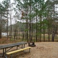 Typical site at Beaver Dam Campground.- Beaver Dam Campground