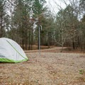 Peaceful morning at Caney Lakes Recreation Area.- Beaver Dam Campground