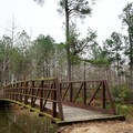 Footbridge leading to more lakeshore and fishing spots.- Beaver Dam Campground