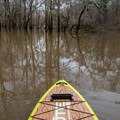 Entering Chemin-a-Haut Creek from Bayou Bartholomew.- Chemin-a-Haut Creek