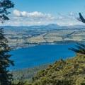 Views of Te Anau through the trees.- New Zealand Great Walks: Kepler Track
