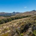 Tussock fields after leaving the trees.- New Zealand Great Walks: Kepler Track