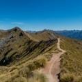 The highlight of the track, the ridge walk.- New Zealand Great Walks: Kepler Track
