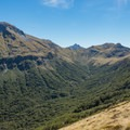 Getting back down to bushline.- New Zealand Great Walks: Kepler Track