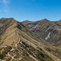 Looking back on the ridge walk.- New Zealand Great Walks: Kepler Track