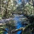 Iris Burn.- New Zealand Great Walks: Kepler Track