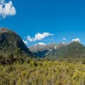 View from the wetlands viewing platform.- New Zealand Great Walks: Milford Track