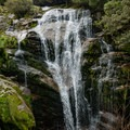 There are many falls along the trail on the way to the next hut.- New Zealand Great Walks: Milford Track