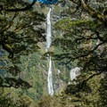 On the way to Sutherland Falls.- New Zealand Great Walks: Milford Track