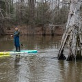 Paddleboarding for an up-close view.- Bayou Dorcheat